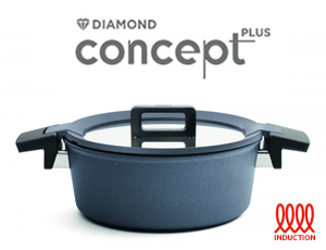 Concept Plus Induction